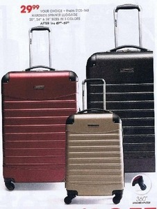 "Hardside 20"" Spinner Luggage"