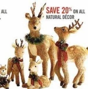 All Natural Decor