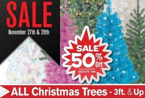 All Christmas Trees 3' & Up