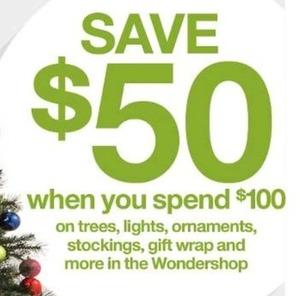 Spend $100 on Select Wondershop Items