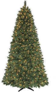 7.5' Sheffield Pine Tree