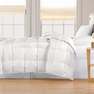 Classic 240 TC Light-Weight All-Season Down Comforter