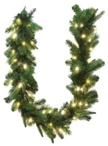 Celebrations Prelit Green LED Garland 6 ft. - Warm White