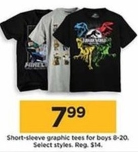 Short-Sleeve Graphic Tees for Boys