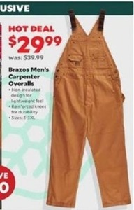 Brazos Men's Carpenter Overalls