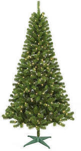 Trimming Traditions 7' Pre-lit Alpine Balsam Fir with 250 Clear Lights